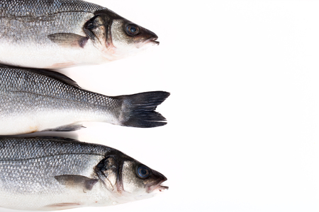 two heads: Three fresh sea bass on a light background. tails and two heads. With space for text