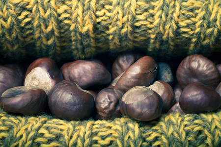 Chestnuts in a knitted hat. Toned. photo