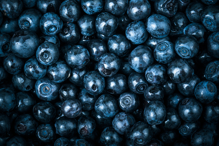 manually: blueberries collected manually. background