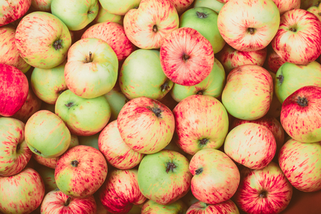 fruits background: Natural background of yellow-red seasonal apples. Toned.