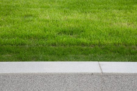 Groen gras op het gazon. Selectieve aandacht. Ondiepe scherptediepte. Stockfoto