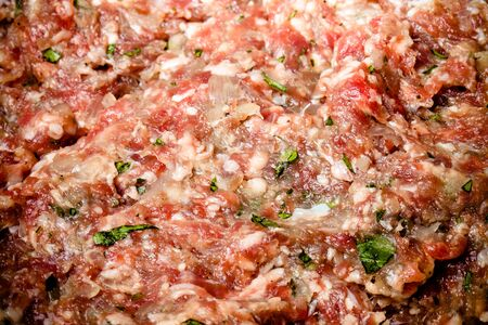 forcemeat: Forcemeat for pelmeni - Russian ravioli. Cooking process. Selective focus. Toned.