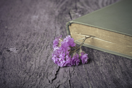 Old opened book and dry flower - romantic composition on a old grey wooden background. Selective focus. Toned.