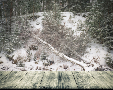 gangway: Snowy winter in Russia. View from dark wooden gangway, table or bridge. Collage. Toned.