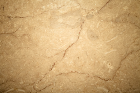 marble floor: Surface of the stone for natural background. Toned.