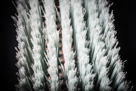 bristle: Bristle brush for clothes. Shallow depth of field. Selective focus. Toned.
