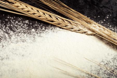 polvo: espigas de trigo y harina de espolvorear sobre fondo negro. Virada. Foto de archivo