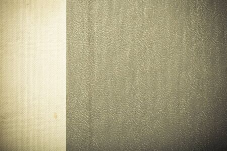 plastic backdrop: Surface of leatherette for textured background. Toned.
