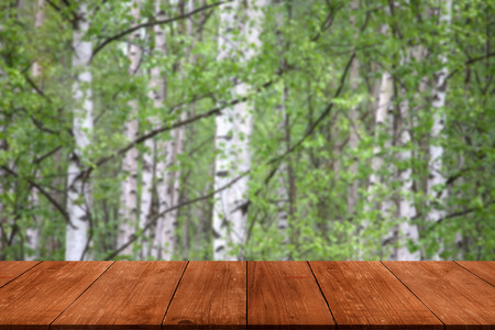 gangway: View from dark wooden gangway, table or bridge to the forest. Collage.