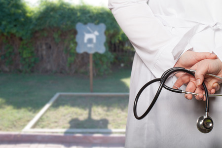 The doctor put his hands with stethoscope behind his back on a blurred background. Фото со стока