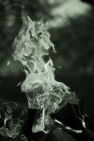 Bright flame of bonfire. Defocused. Toned.