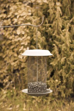 feeders: Bird feeders in the garden. Selective focus. Shallow depth of field. Toned. Stock Photo