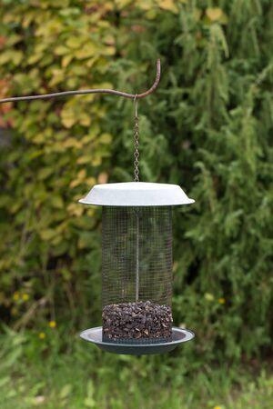 feeders: Bird feeders in the garden. Selective focus. Shallow depth of field.