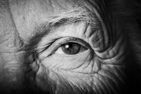 Portrait of elderly woman. Closeup view. Toned. Stock Photo