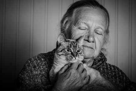 grayness: Portrait of an elderly woman with cat on a light background. Toned. Stock Photo
