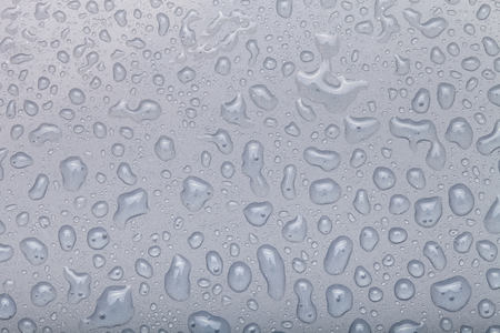 refreshed: Drops of water on a color background. Gray. Selective focus. Stock Photo