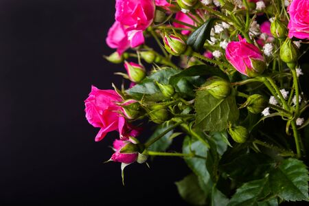 Wonderful bouquet of bush roses and gypsophila on a dark background. Selective focus. Shallow depth of field.