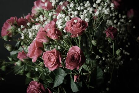 Wonderful bouquet of bush roses and gypsophila on a dark background. Selective focus. Shallow depth of field. Toned.