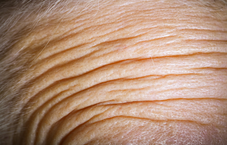 grayness: Forehead of an elderly woman with deep wrinkles. Close up detail. Toned.