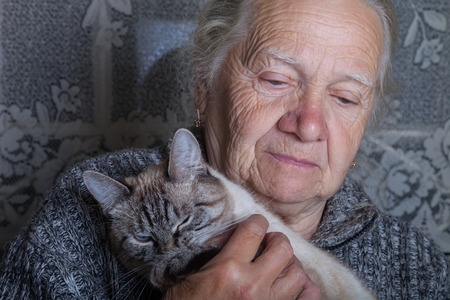 Elderly woman with cat in rustic interior. Stock Photo