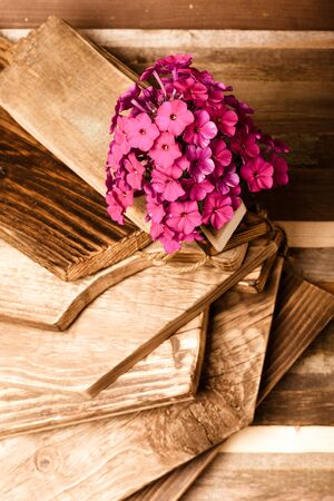 Flower on a rough weathered wooden board. Rustic texture for background. Toned.