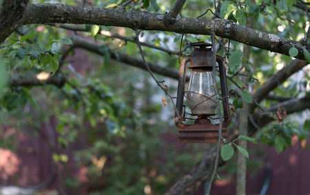 Old lamp on a branch of apple tree in a garden. Shallow depth of field. Selective focus.