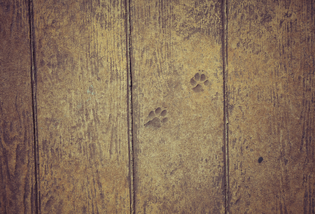 Old wooden planks with peeling paint like background. Toned. Stock Photo