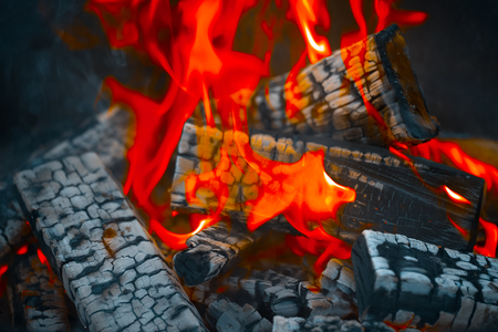Firewood burning in fire. Selective focus. Toned. Stock Photo