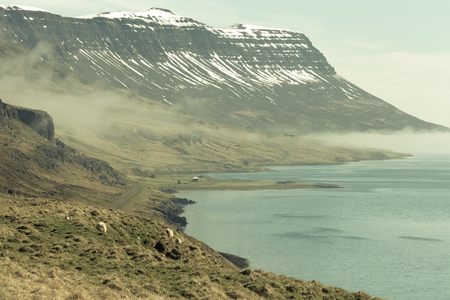 Foggy landscape of the fjords of Iceland. Toned.