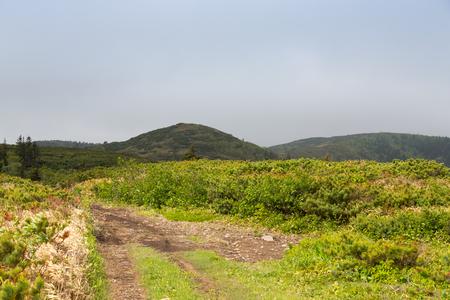 Beautiful deserted landscape of Kunashir island.