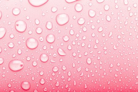 Drops of water on a color background. Selective focus. Pink. Toned. Imagens