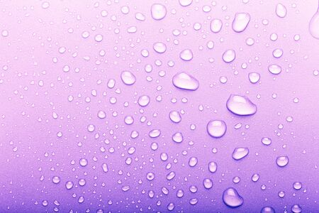 Drops of water on a color background. Selective focus. Purple. Toned.