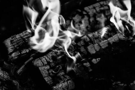 Burning wood logs, cooking on fire, warm evening, sparkles in the air, warm air from the fire. Monochrome 스톡 콘텐츠