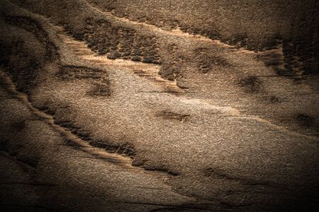 Surface of old textured wooden board for background. Toned. Standard-Bild - 133908256