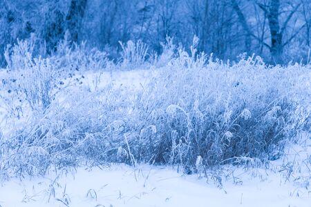 Piękny zimowy krajobraz w rosyjskiej prowincji. Stonowany.