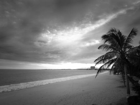 Sandy beach on a territory of hotel on a coast of the South China Sea. Toned.