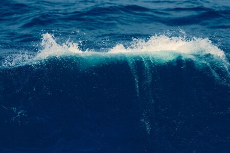 White crest of a sea wave. Selective focus. Shallow depth of field. Toned. 스톡 콘텐츠