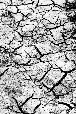 Dry cracked land. Natural background. Toned.