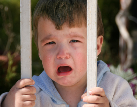 fussy: Little boy crying behind the gate