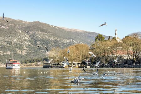 Ioannina city and lake Pamvotis located in Epirus. Greece