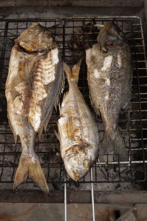 Fresh fishes on bbq