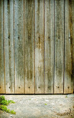 Old wooden door background withe pavement and plant Stock Photo