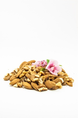 Almonds and nuts isolated at the studio