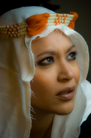 Portrait of a beautiful multiracial girl wearing head accessories