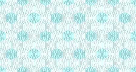 Achtergronden patroon naadloze geometrische witte zeshoek abstracte en groene aqua lijn vector ontwerp. Pastel kleur achtergrond.