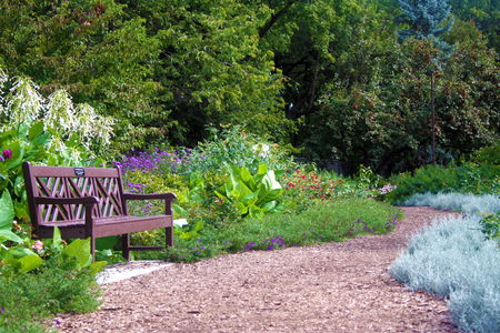 park bench in very secluded garden surrounded by different flowering plants