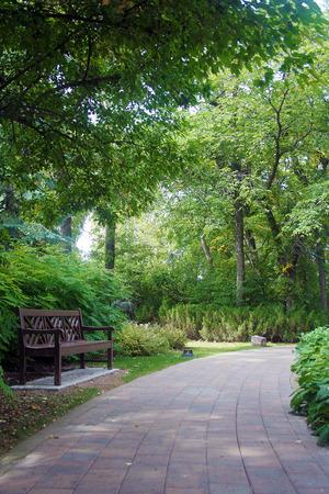 木陰の下で公園のベンチ