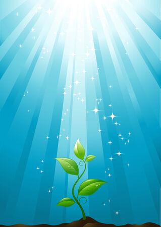 petite plante de plus en plus vers le soleil Illustration