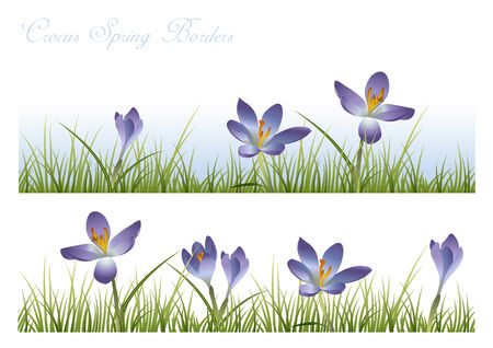 blue crocus spring borders - grass tiles seamlessly; place as many flowers as you want Stock Vector - 4550372