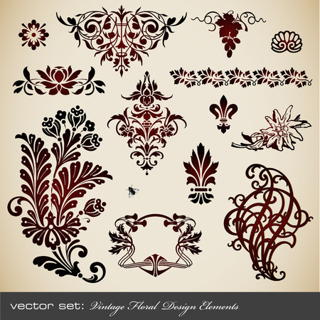 vector set: vintage floral design elements Vector